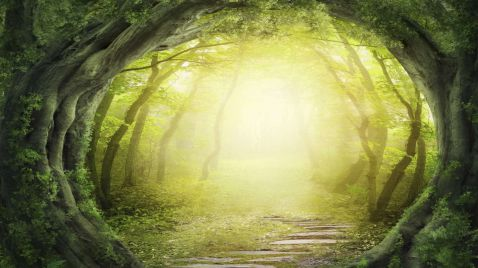 Der Hobbit - Eine unerwartete Reise auf VOX
