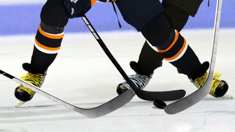 Eishockey - NHL on the Fly |